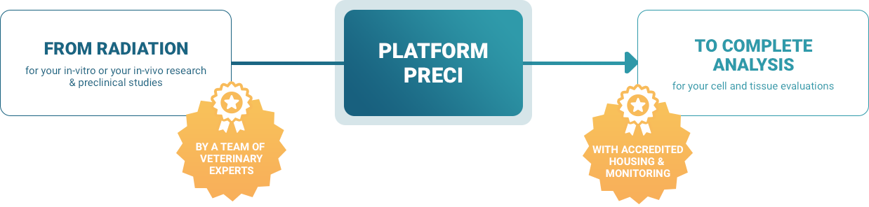 Plateform Preci - From radiation to complete analysis